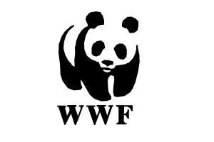 how-draw-wwf-logo